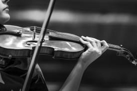 ROSL Solo Strings Prize